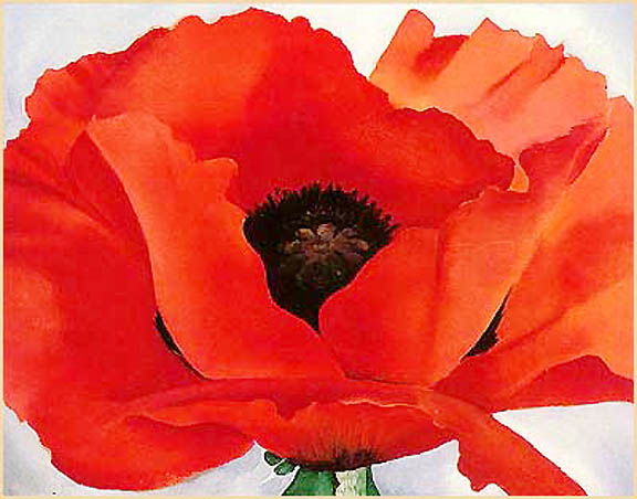 Paint The Town Red Red Poppy Christmas Gift Ideas Saffron Marigold