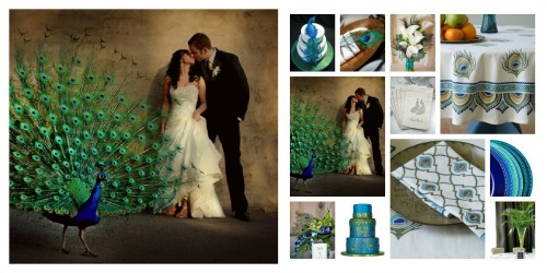 peacock wedding reception ideas
