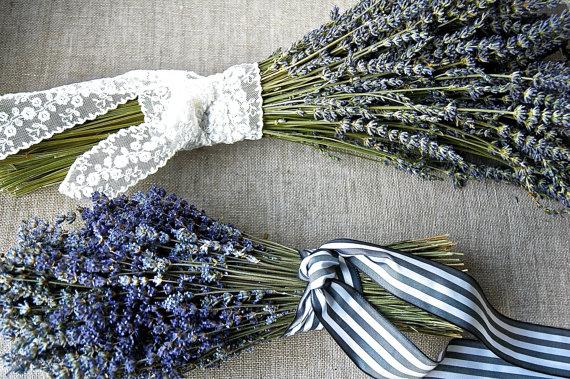 Lavender bouquets, Paulajeansgarden