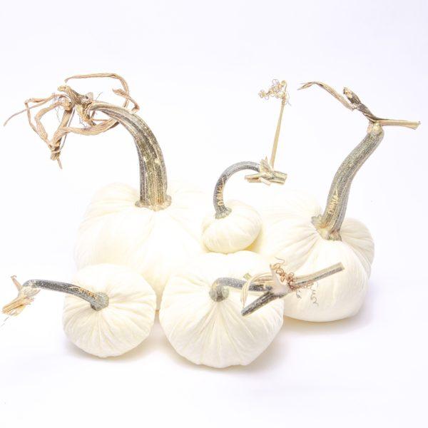 white velvet hot skwash pumpkins and glamorous home decor
