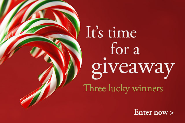 Welcome to our Holiday Giveaway