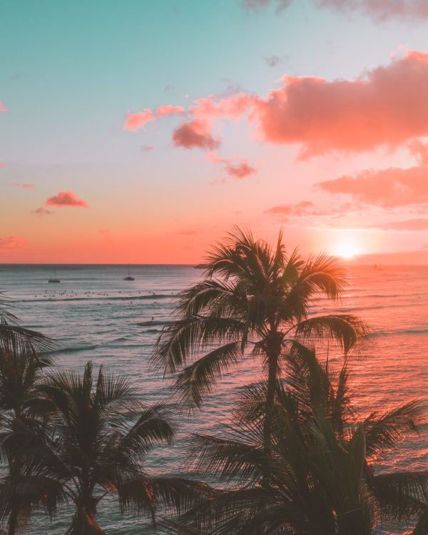 Valentines day ideas and what to do for Valentine's Day? Hawaiian luau