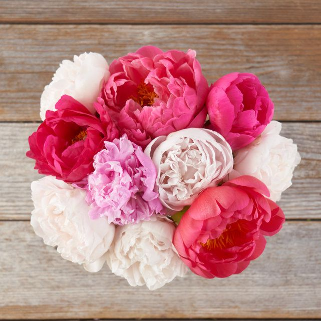 hot pink and white floral bouquet