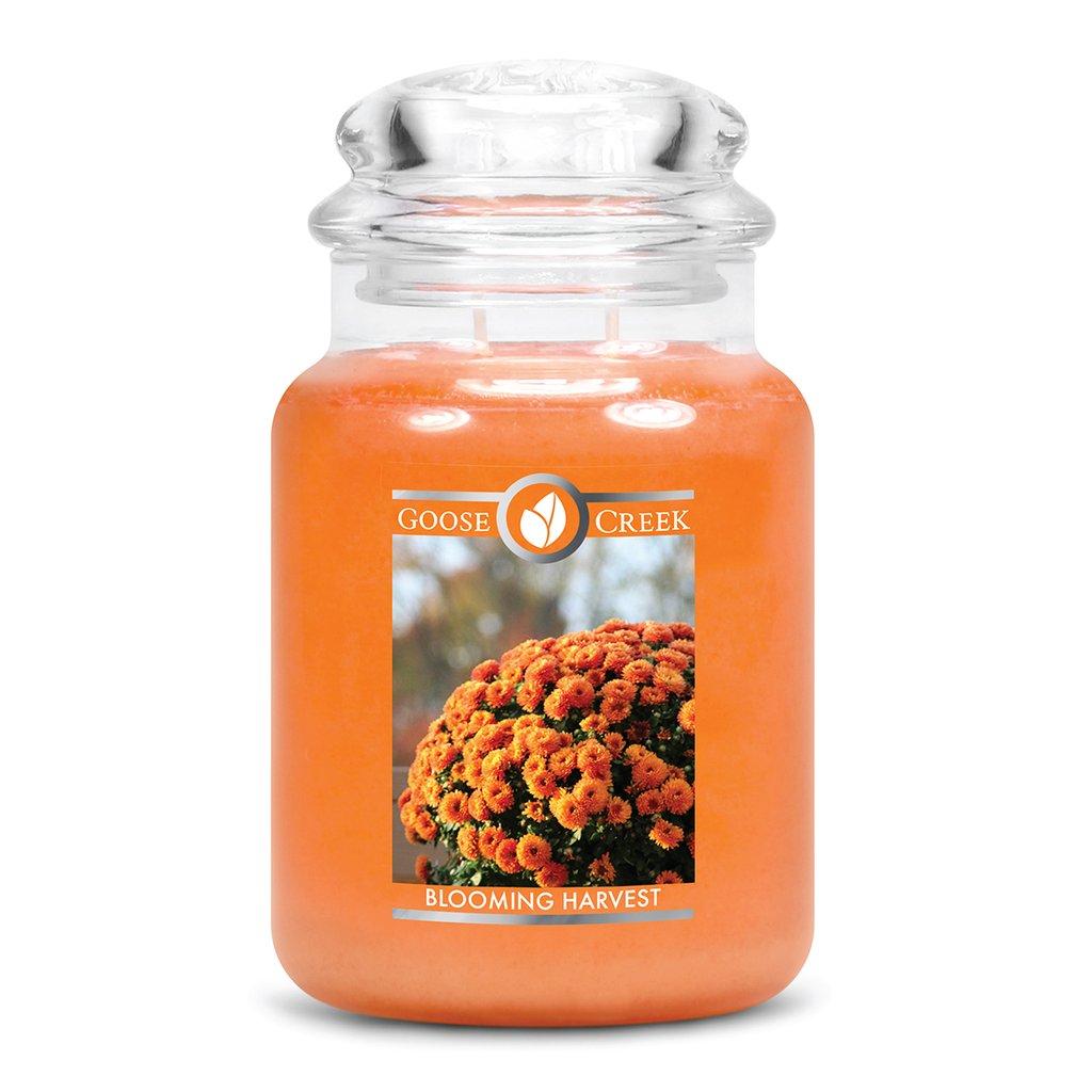Goose Creek blooming harvest jar candle