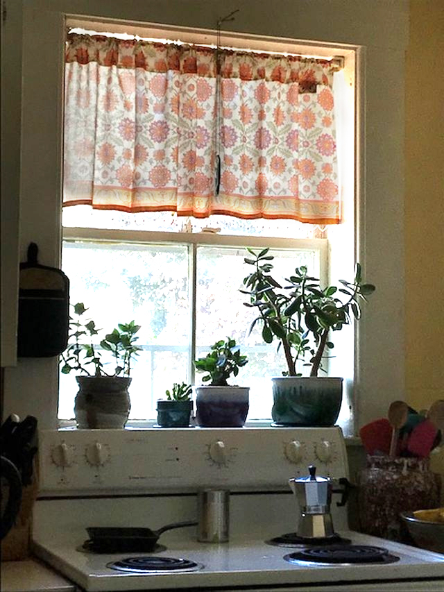 plants and a block printed curtain in the kitchen as bohemian home decor