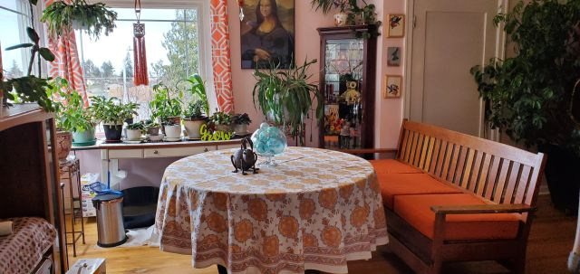 bohemian home decor with shades of yellow and orange, artwork, bench, plants, curios