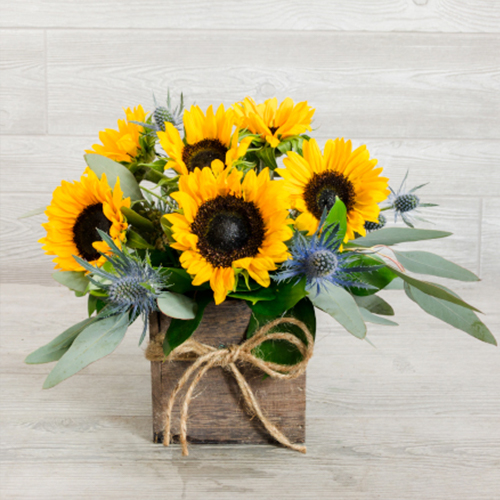 bouquet of sunflowers in a wooden box