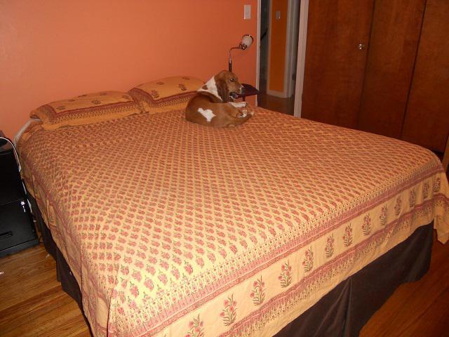 king koil sealy memory foam mattress reviews